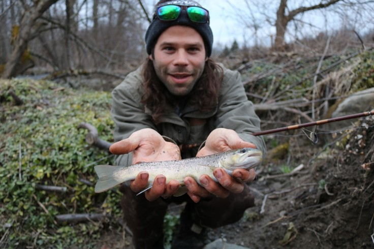 trout roots 11